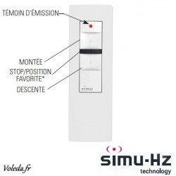 Telecommande Simu Hz radio 1 canal