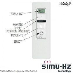 Telecommande Simu Hz radio 5 canaux