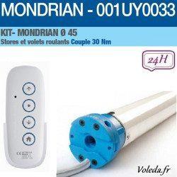 Motorisation volet roulant Came Mondrian 30nm radio 001UY0033