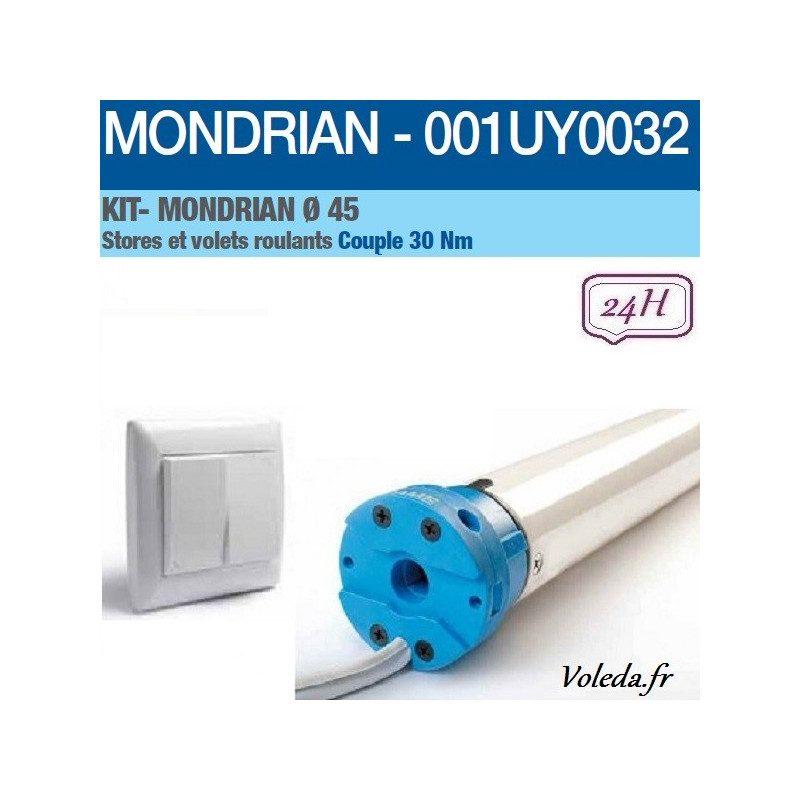 Motorisation volet roulant Came Mondrian 30nm 001UY0032