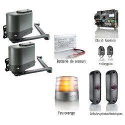 Axovia Multipro 3s io Motorisation Somfy portail battant pack confort io