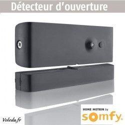 Detecteur d'ouverture Somfy gris