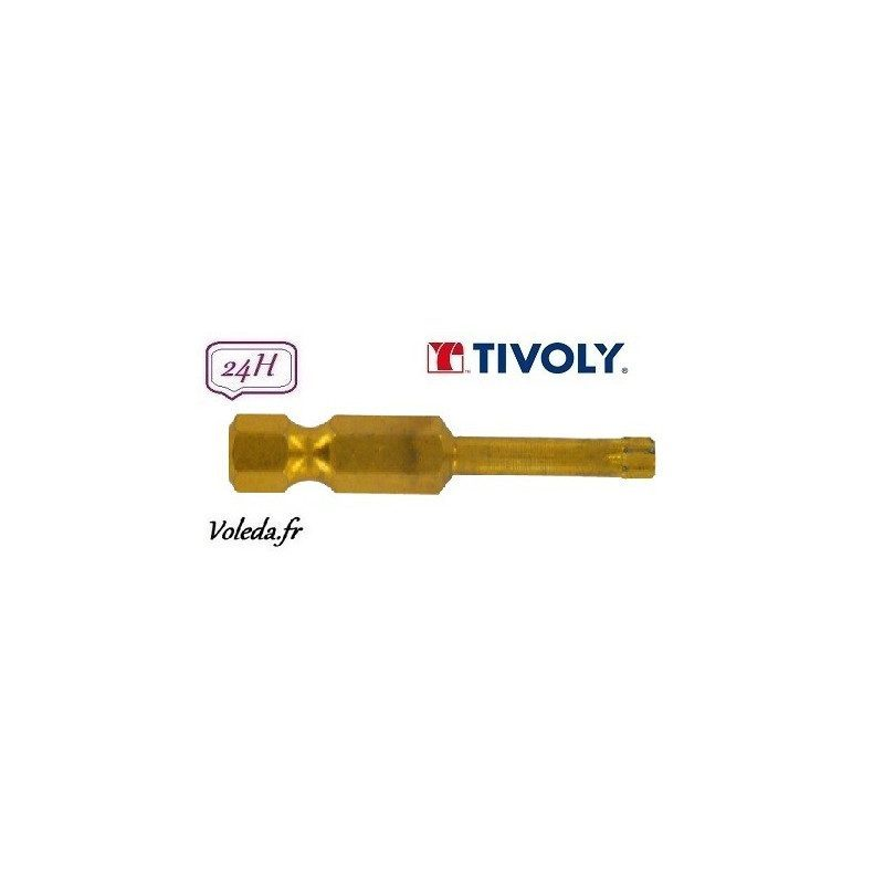 Embout de vissage Tivoly Diamant bi-torsion Torx 50mm N40