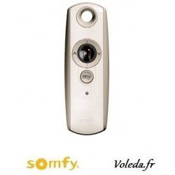 Telecommande Somfy Telis 1 variation Rts pure